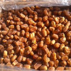 椰枣批发-椰枣网-伊拉克枣批发-黄金椰枣批发